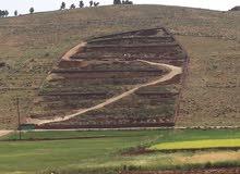 مزرعة للبيع ما بين جرش والمفرق... مطلة ومرتفعة... تبعد عن طريق جرش المفرق 200 متر