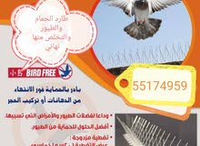 طارد الحمام والطيور نهائي 55174959