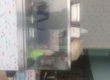 ثلاجة عرض مطعم
