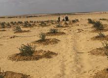 أراضى بمساحات مختلفة تبدأمن 5 فدان حتى 300 فدان على طريق مصر الفيوم