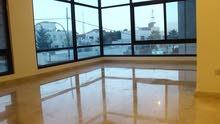شقة 230 م2 للبيع في اجمل مناطق عبدون للبيع