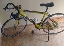 دراجة كورس(رياضية)ايطالية