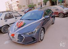 Hyundai Elantra in Cairo for rent