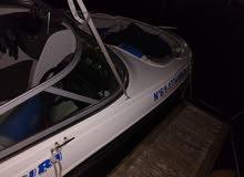 bateau Rinker 216BR