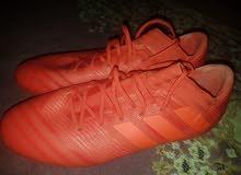 حذاء كرة من شركة أديداس (اديداس)
