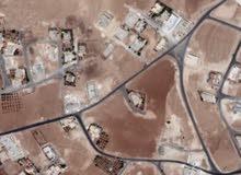 ارض في شفا بدران حوض مرج الفرس