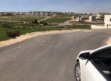 للبيع قطعة ارض دونم في شفا بدران حوض مروج المحمر