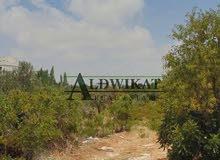 ارض 776م للبيع في منطقة شفا بدران ( مرج الفرس )