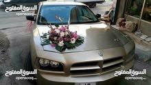 Chevrolet Camaro in Amman for rent