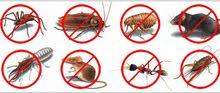 أفضل شركة تنظيف ومكافحة حشرات بالامارات