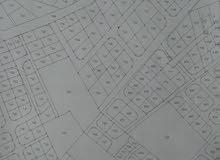 أرض للبيع في منطقه ابو الزيغان الغربي