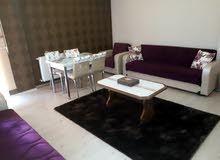 Best property you can find! Apartment for sale in Shamiya neighborhood
