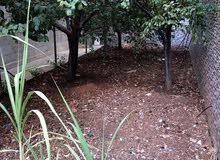 شقة فارغة الايجار دوبلكس 300م 6نوم مع ترس وحديقة وكراج ومدخل خاص