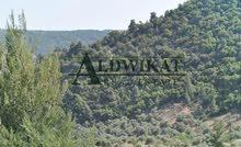 ارض 750م للبيع في منطقة شفا بدران (مرج الفرس)