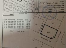 ارض للبيع في ولاية بركاء سوادي جنوب