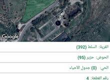 ارض للبيع السلط وادي شعيب