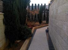A More Rooms and More than 4 Bathrooms Villa in Amman
