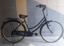Ladies japanese bike