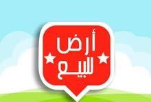 ارض مساحه 1000 م مسجله مبانى بشمال التحرير