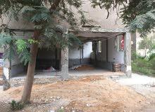 للإيجار عدد 2 محل علي شارع الميثاق في زهراء مدينة نصر