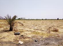 أرض زراعية للبيع 25 فدان ملك