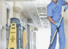 شركة البريق اللامع للتنظيفات والتعقيم ومكافحة الحشرات