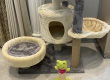 بيت قطط cat tree house