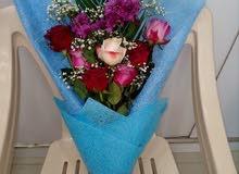محل لبيع الورود و تغلبف الهدايا الكائن في منطقة العامرات الخامسة