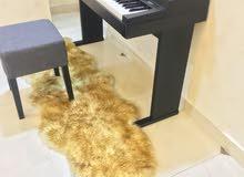 بيانوا