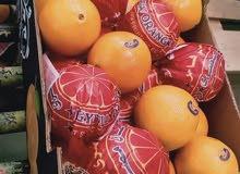 برتقال طازج ممتاز للاكل ولعمل العصائر والمشروبات