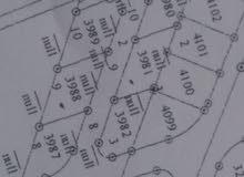 أراضي للبيع في اسكان الهاشمية عرض لنهاية السنة