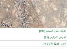 ارض محافظة المفرق / بلدة حمراء السحيم/طريق بغداد الدولي