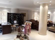 شقة فاخرة للايجار 350 م في الحي التاني فيلات التجمع الخامس