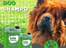 Premium Shampoo for Dogs and Cats 5 Liters Gallon
