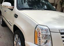 White Cadillac Escalade 2012 for sale