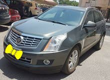 Cadillac SRX4 2013 Lady driven car