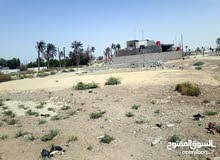 قطعة ارض مساحة  250 متر السعر 60000 ملاين في ابو الخصيب07710753225