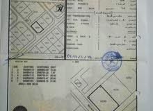 أرض في العامرات مدينة النهضه مربع 18 كورنر وجنب البيوت بسعر مناسب جدا مطلوب 11