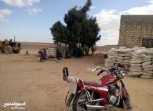 ارض 30فدان ملك من محافظة المنيا طريق اسيوط الغربى
