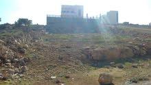 ارض في شفابدران زينات الربوع ( المكمان)  على شارعين