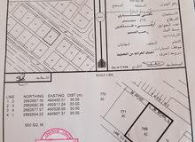 للبيع أرض سكني تجاري الموقع ( أم الجعاريف سيح الطيبات ) ولاية صحم ...