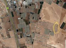 500م في الطنيب تقع خلف جامعة الاسراء