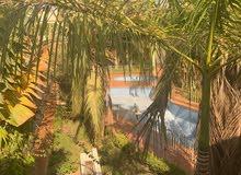 فيلا للإيجار في كمبوند بحي الشاطىء بسعر لقطة