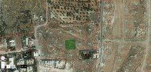 قطع اراضي في صافوط الشرقية بالقرب من حي الملك عبدالله