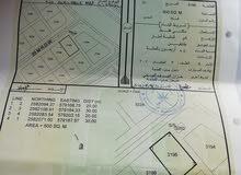 ارض للبيع في ولاية نخل الحي طوي القصفه أرض زاويه وقريبه من شارع