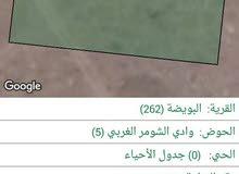 ارض للبيع1017 متر في وادي الشومر