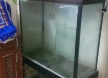 حوض سمك يصلح كاديكور للبيوت و المحﻻت .. ^_^