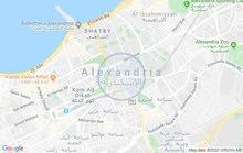 شقة للبيع بشاطئ النخيل العجمي الإسكندرية