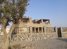 فيلا روز الجبل الاخضر villa rose Aljabal akdhar
