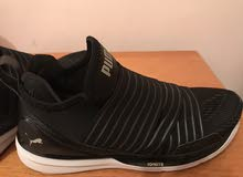puma ignite original new